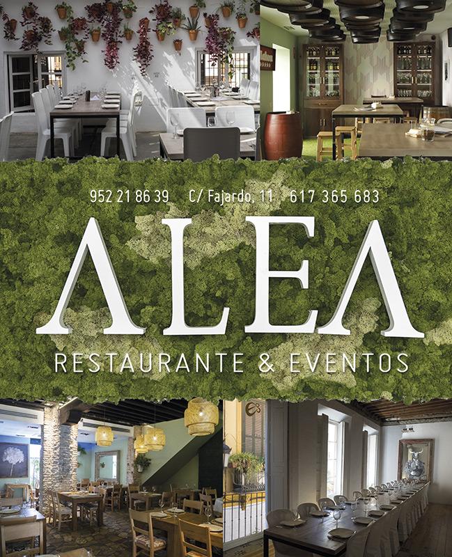 alea-festival-cine-roalcuadrado-649x-800