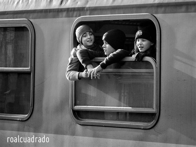 life-01-roalcuadrado-1000x750